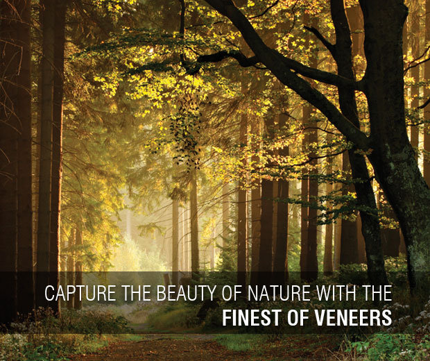 Capture the beauty of nature with the finest of veneers